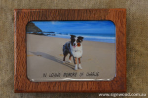 wooden pet frame