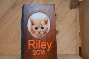 Wood Pet Frame with Etched Name and Year