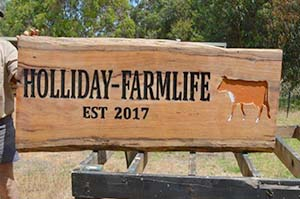 holiday-farmlife