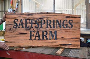 saltsprings-farm